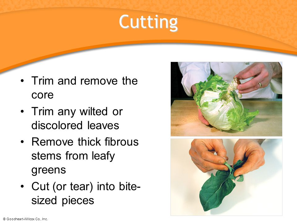 Cutting Trim and remove the core Trim any wilted or discolored leaves