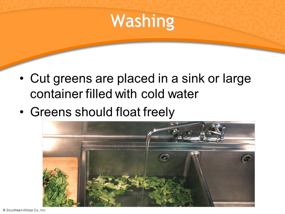 Washing Cut greens are placed in a sink or large container filled with cold water. Greens should float freely.