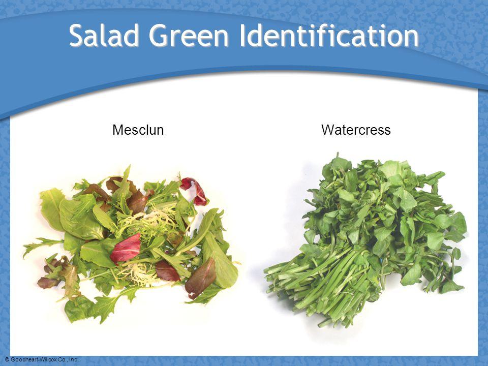 Salad Green Identification