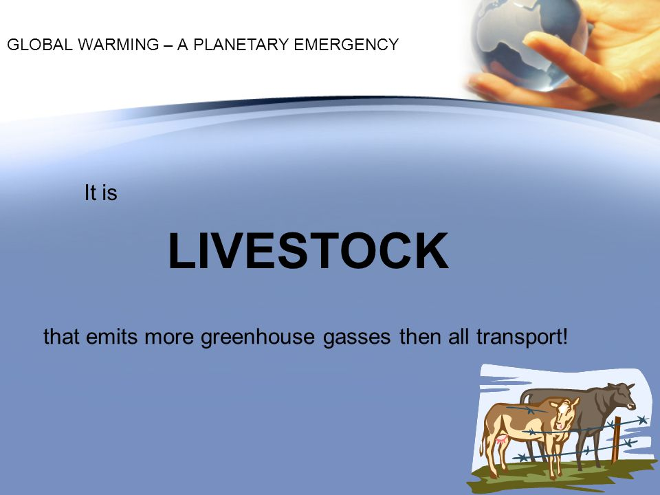 LIVESTOCK It is that emits more greenhouse gasses then all transport!