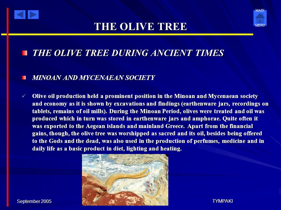 THE OLIVE TREE THE OLIVE TREE DURING ANCIENT TIMES