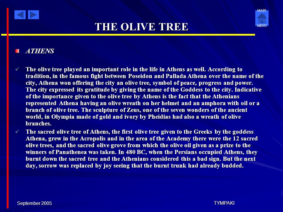 THE OLIVE TREE ATHENS.