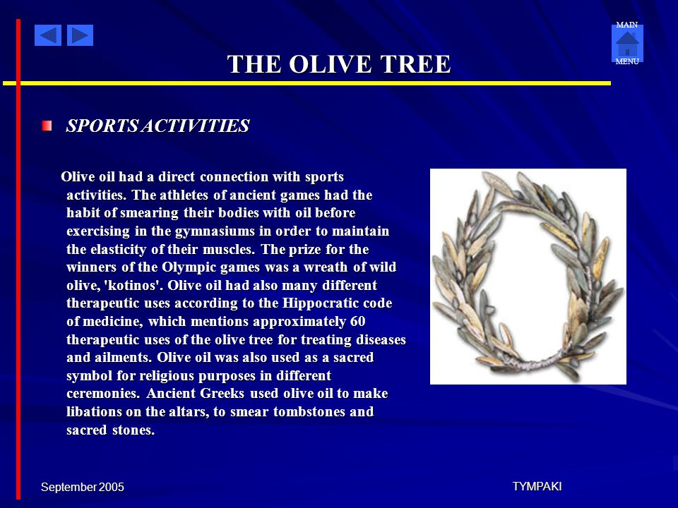 THE OLIVE TREE SPORTS ACTIVITIES