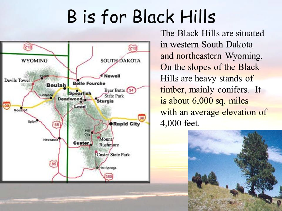 B is for Black Hills B is for Black Hills