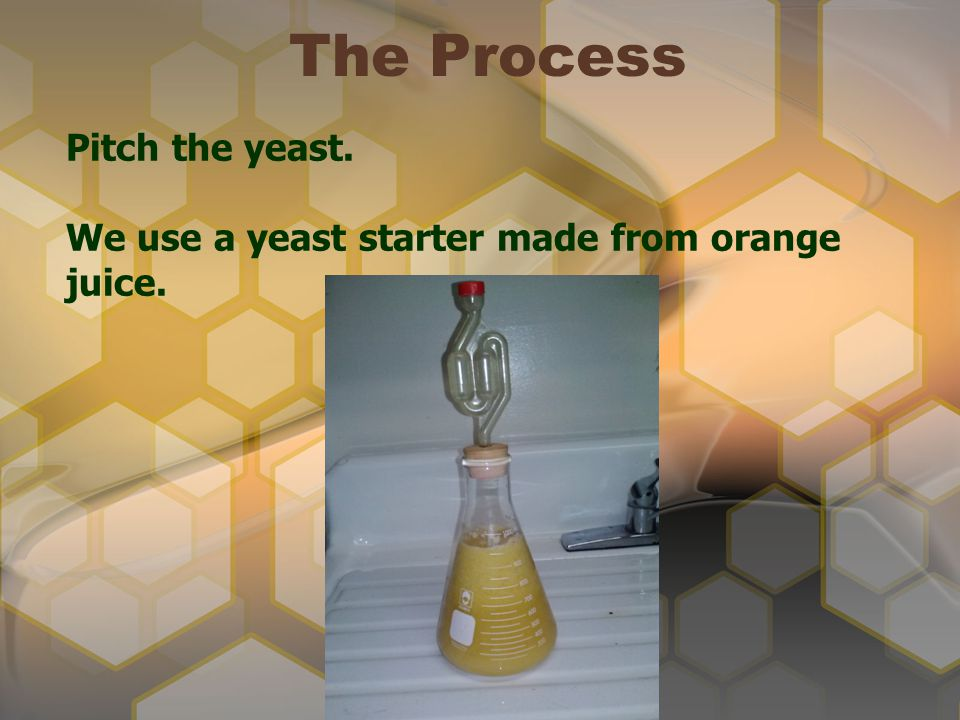 The Process Pitch the yeast.