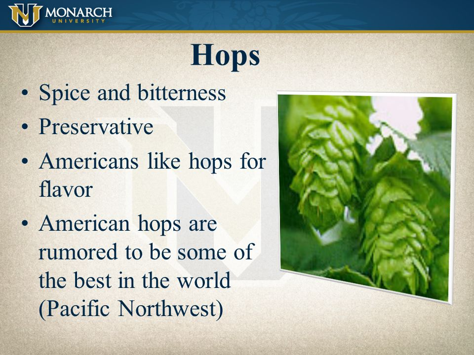 Hops Spice and bitterness Preservative Americans like hops for flavor