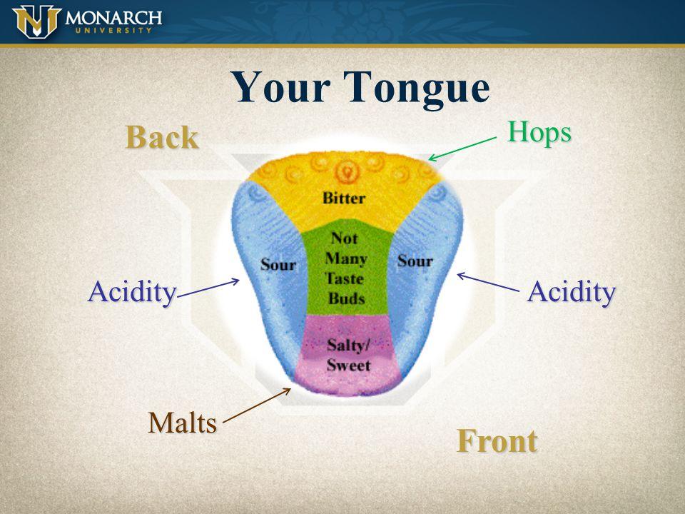 Your Tongue Back Hops Acidity Acidity Malts Front