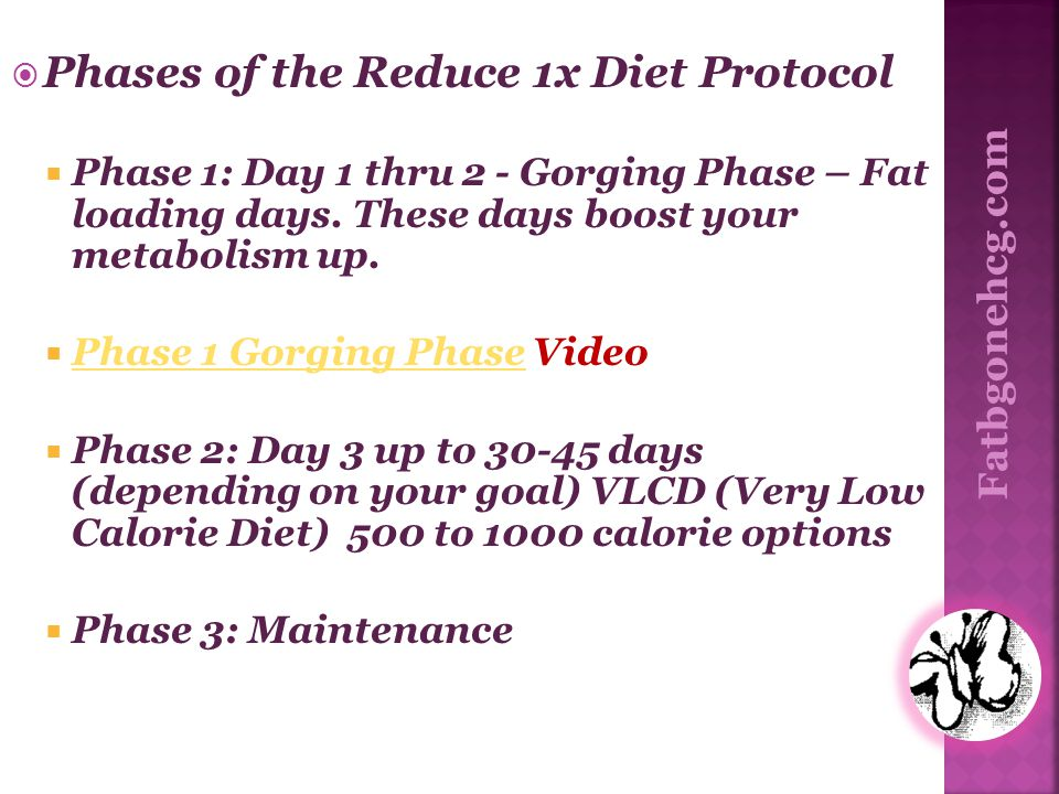 Phases of the Reduce 1x Diet Protocol