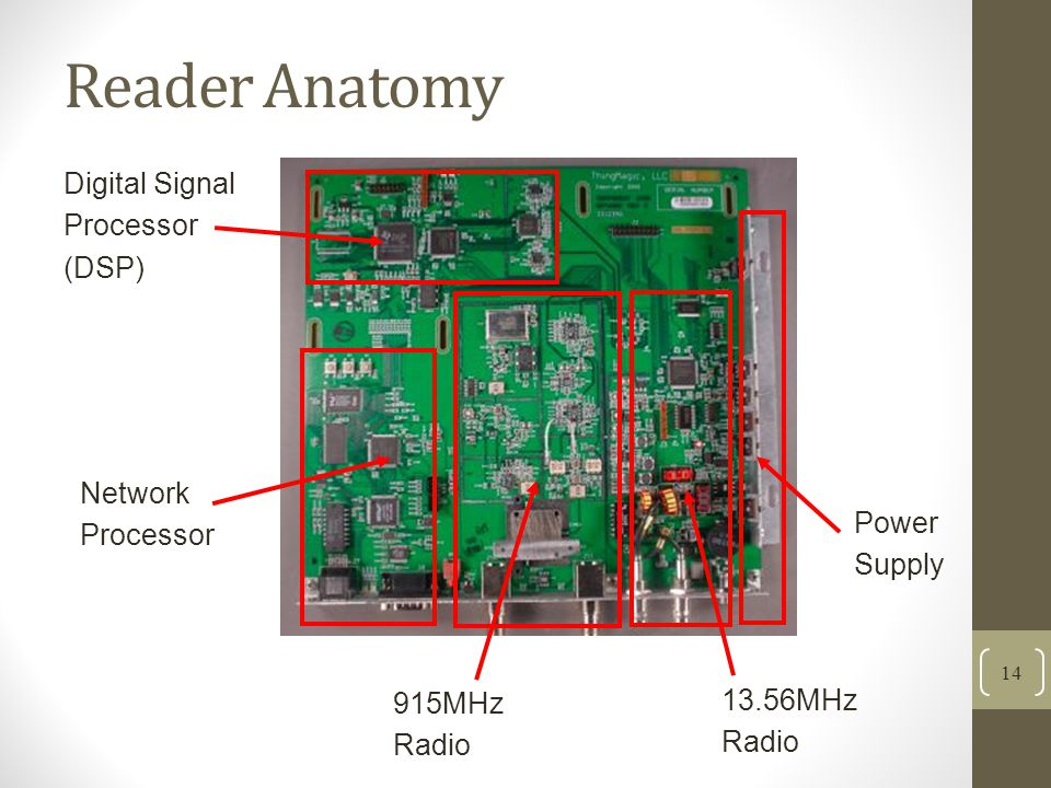 Reader Anatomy Digital Signal Processor (DSP) Network Processor Power