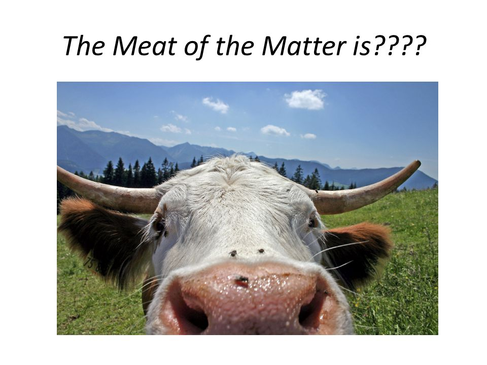The Meat of the Matter is