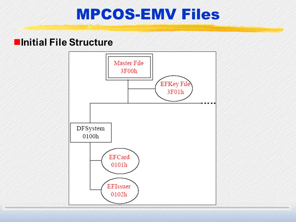 Initial File Structure