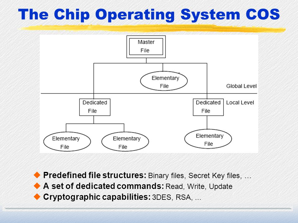 The Chip Operating System COS