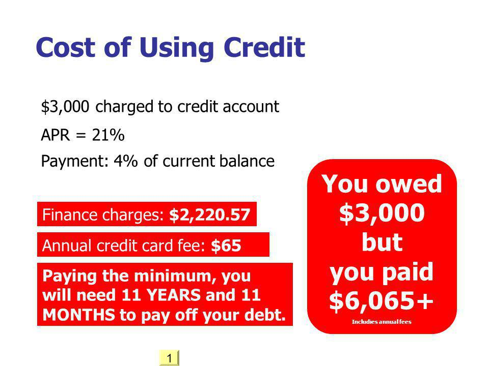 Cost of Using Credit You owed $3,000 but you paid $6,065+