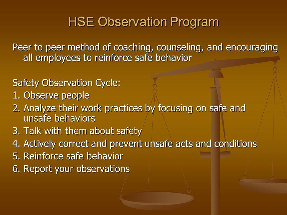 HSE Observation Program