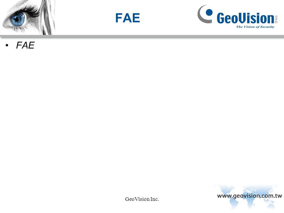 FAE FAE GeoVision Inc.