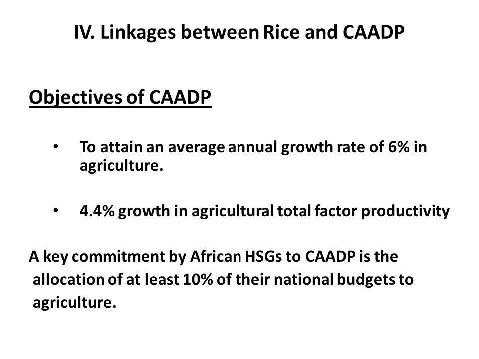 IV. Linkages between Rice and CAADP