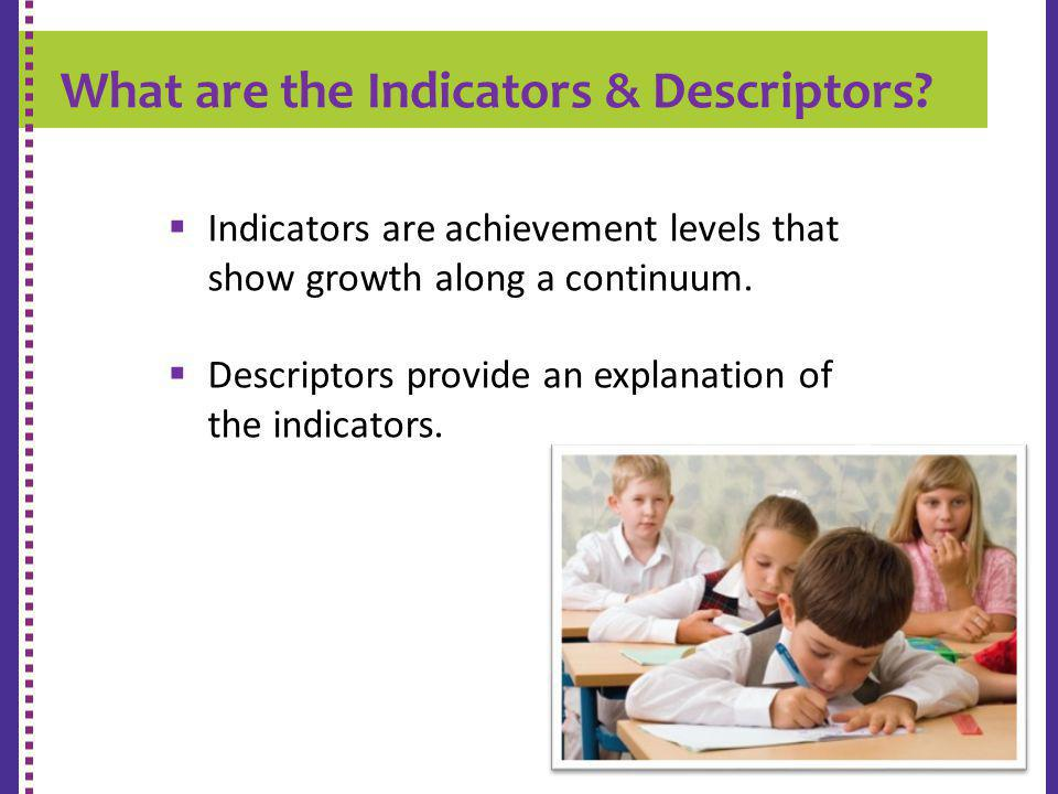 What are the Indicators & Descriptors