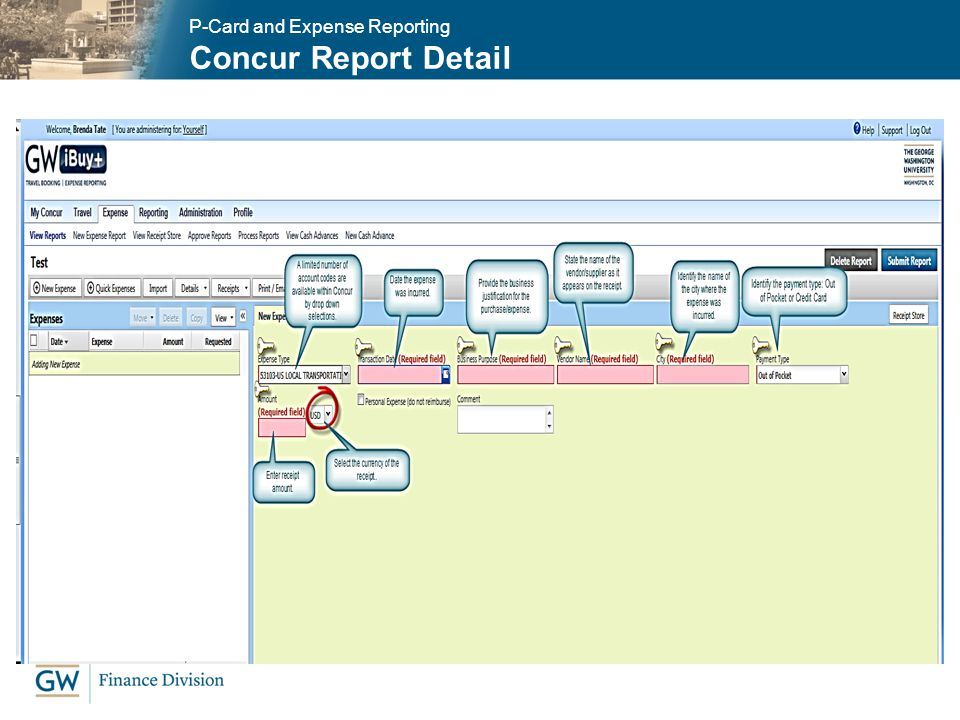 Concur Report Detail P-Card and Expense Reporting
