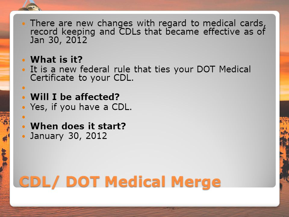 Driving Hands Free And The CdlMedical Card Merge  Ppt Download