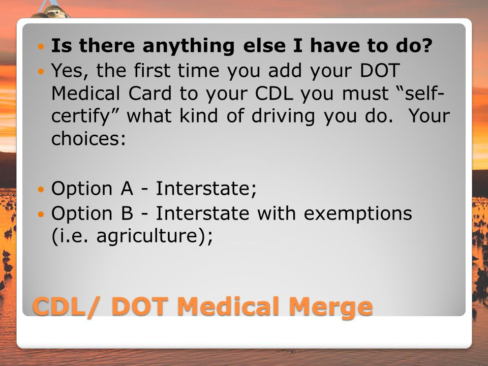 Medical Card For Commercial Drivers  The Best Driver In