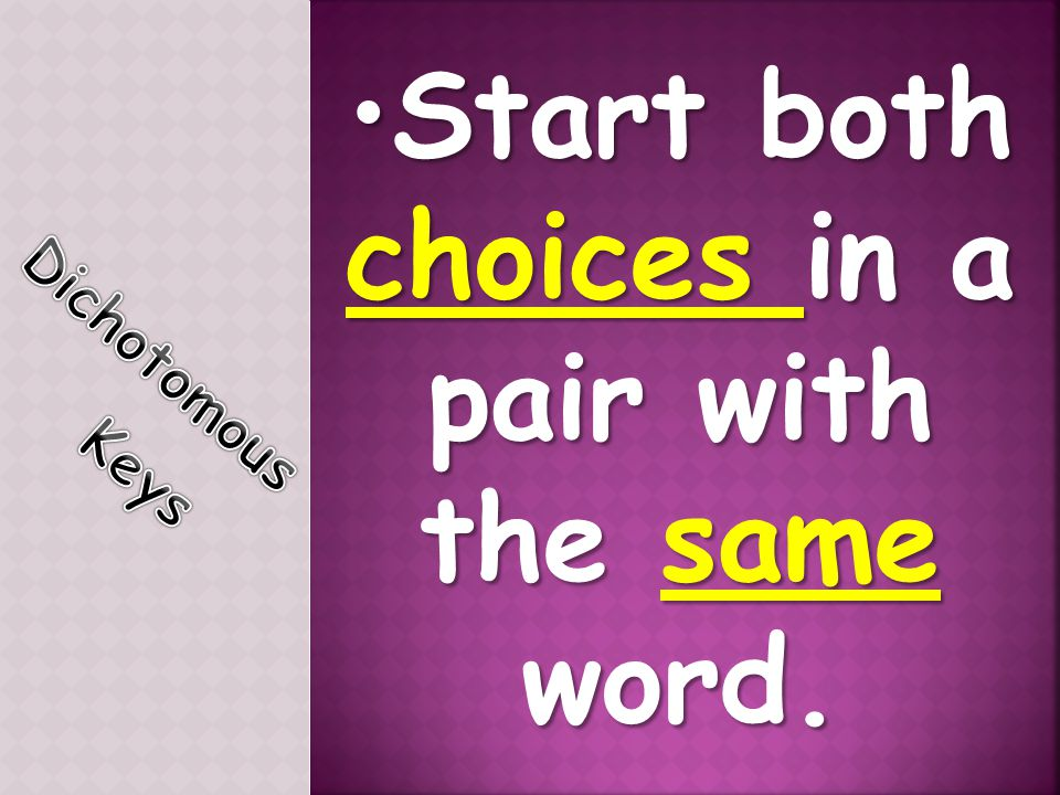 Start both choices in a pair with the same word.
