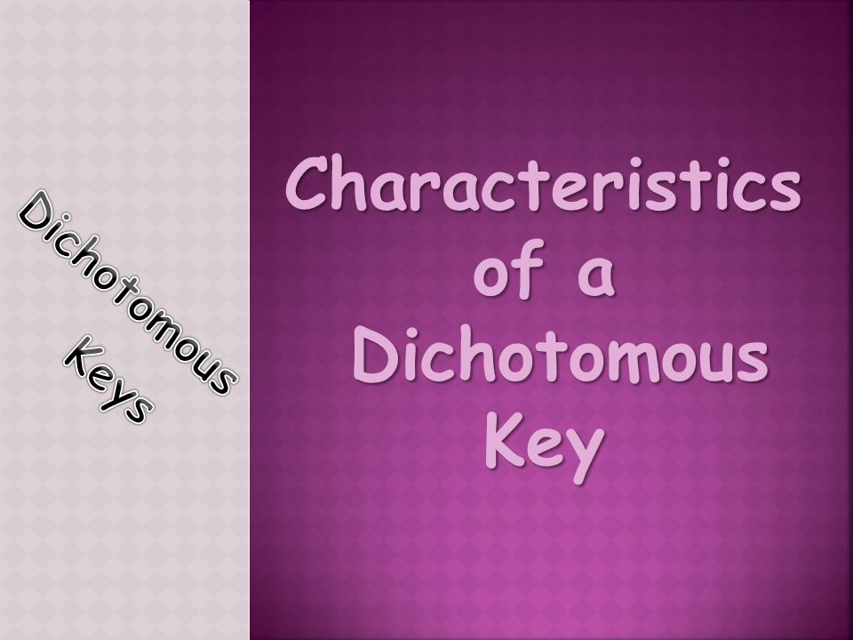 Characteristics of a Dichotomous Key