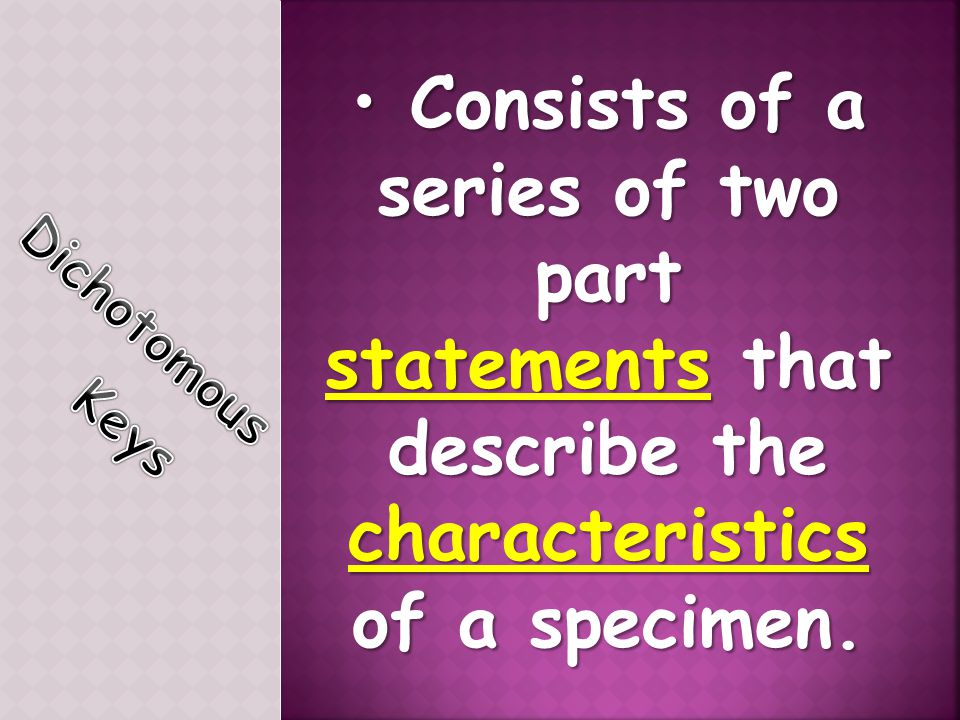 Consists of a series of two part characteristics of a specimen.