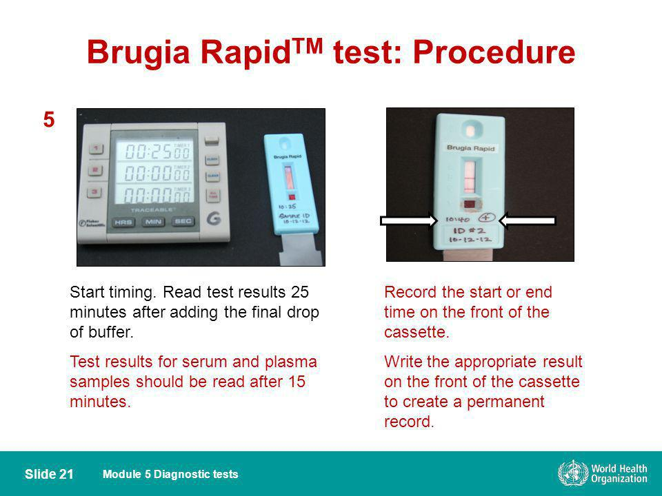Brugia RapidTM test: Procedure