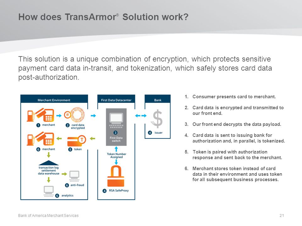 How does TransArmor® Solution work