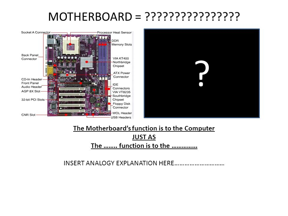 MOTHERBOARD = The Motherboard's function is to the Computer. JUST AS. The …….. function is to the …………...