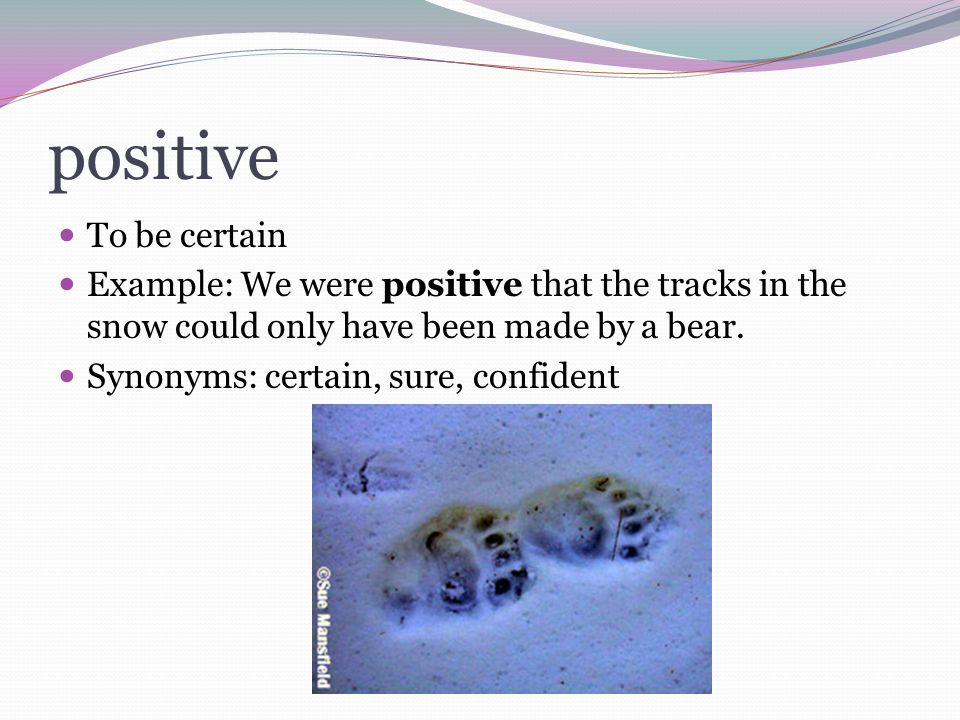 positive To be certain. Example: We were positive that the tracks in the snow could only have been made by a bear.
