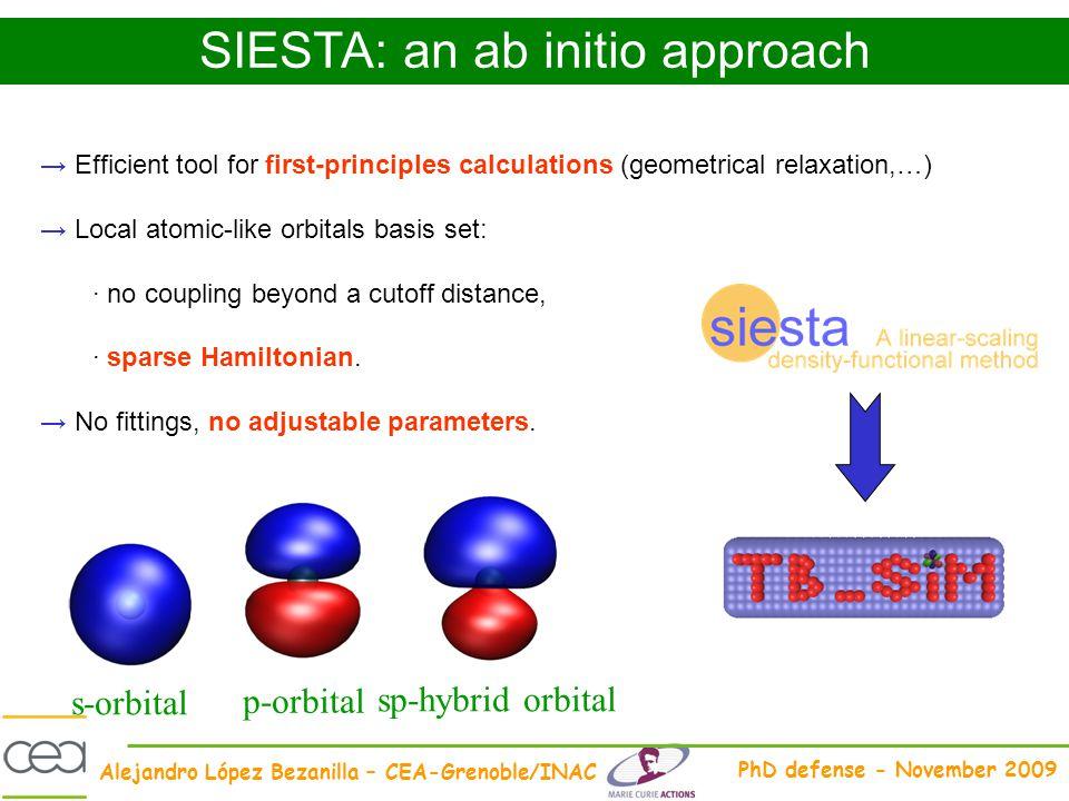 SIESTA: an ab initio approach
