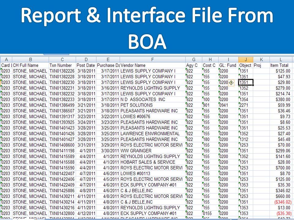 Report & Interface File From BOA