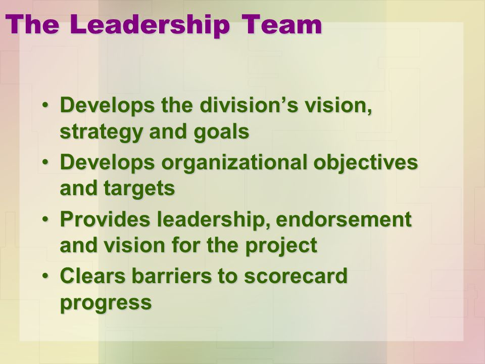 The Leadership Team Develops the division's vision, strategy and goals