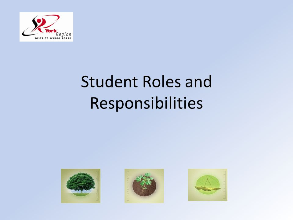Student Roles and Responsibilities