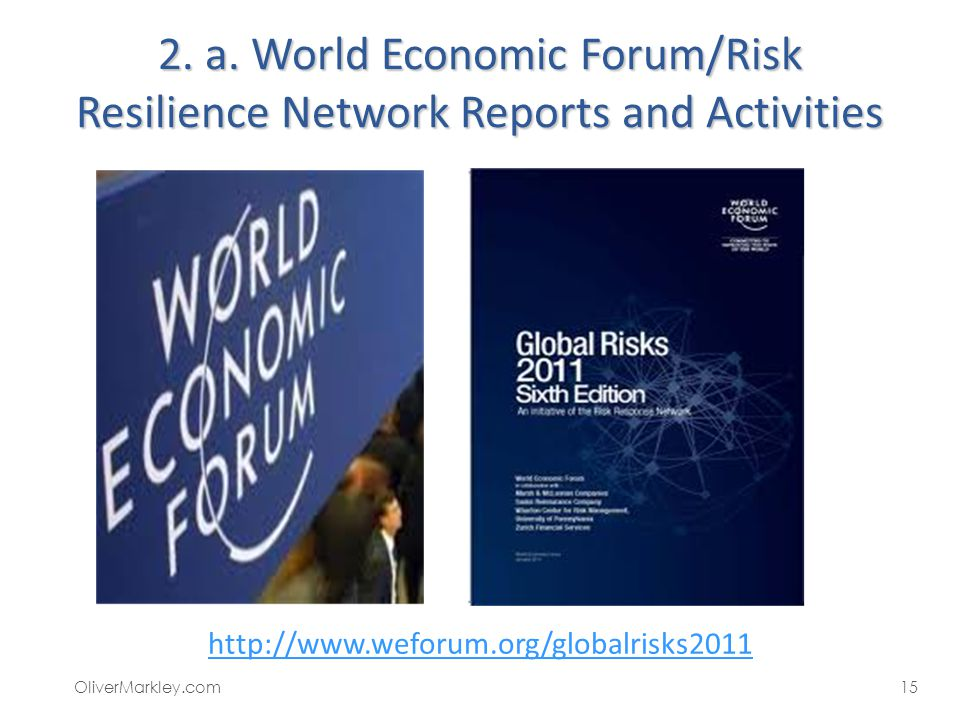 2. a. World Economic Forum/Risk Resilience Network Reports and Activities