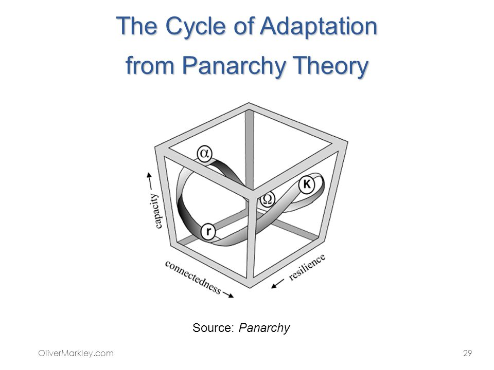 The Cycle of Adaptation from Panarchy Theory