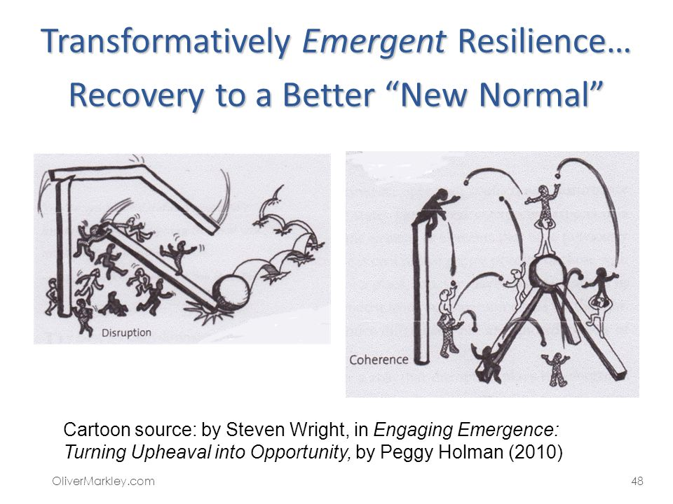 Transformatively Emergent Resilience… Recovery to a Better New Normal