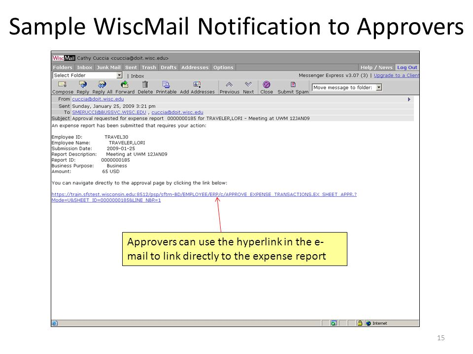 Sample WiscMail Notification to Approvers