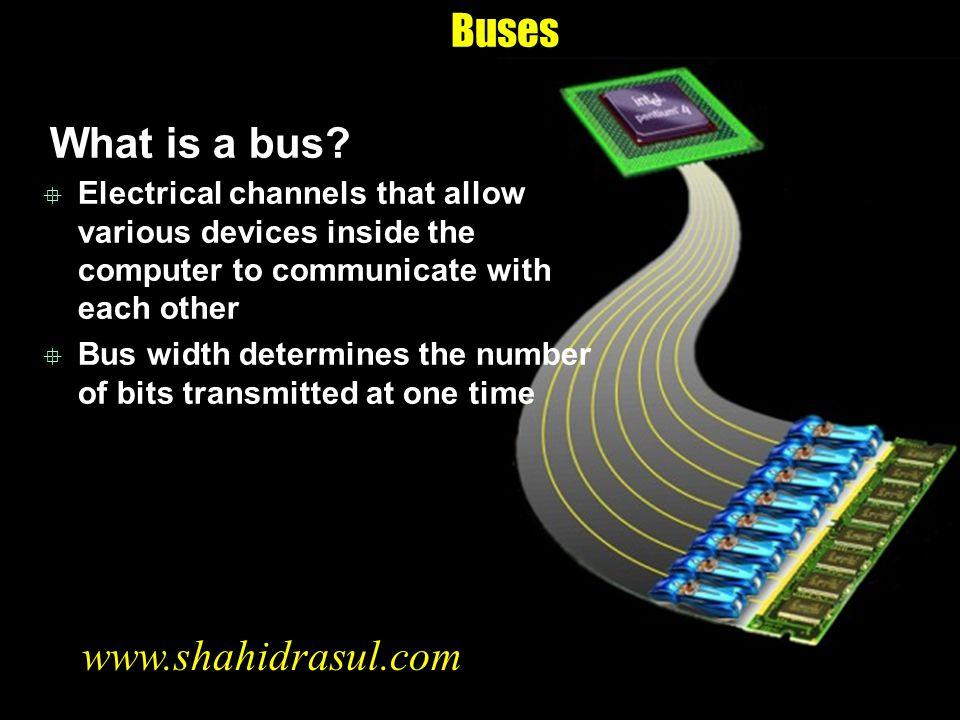 Buses What is a bus www.shahidrasul.com