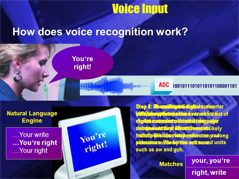 Natural Language Engine