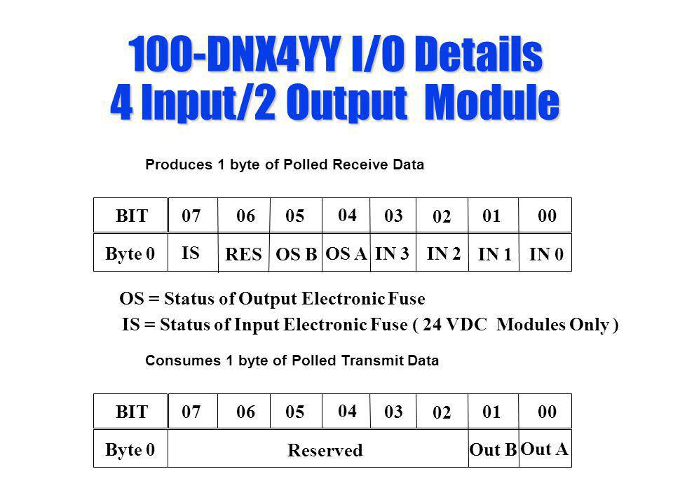 100-DNX4YY I/O Details 4 Input/2 Output Module