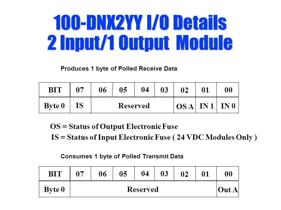 100-DNX2YY I/O Details 2 Input/1 Output Module