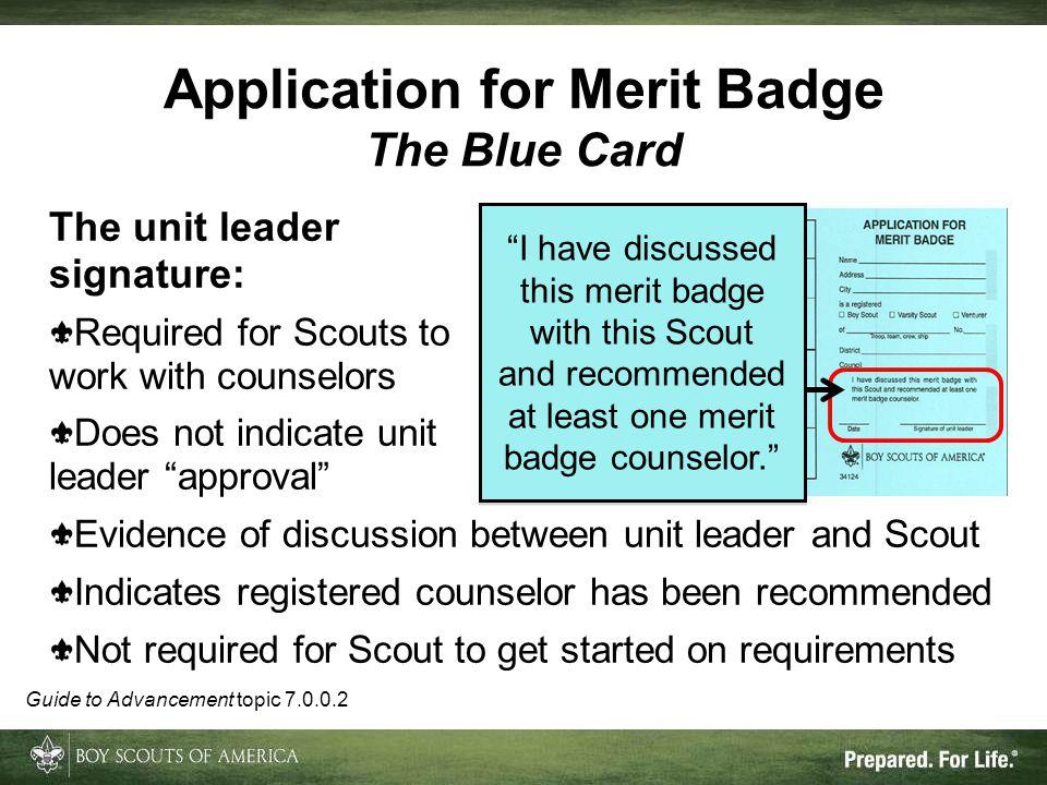 Application for Merit Badge