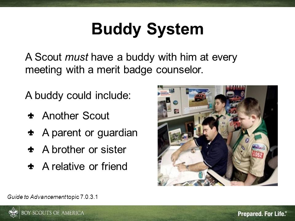 Buddy System A Scout must have a buddy with him at every meeting with a merit badge counselor. A buddy could include: