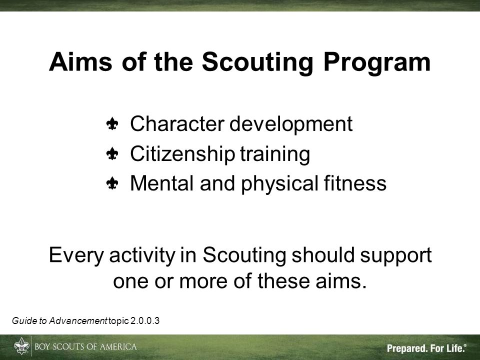 Aims of the Scouting Program