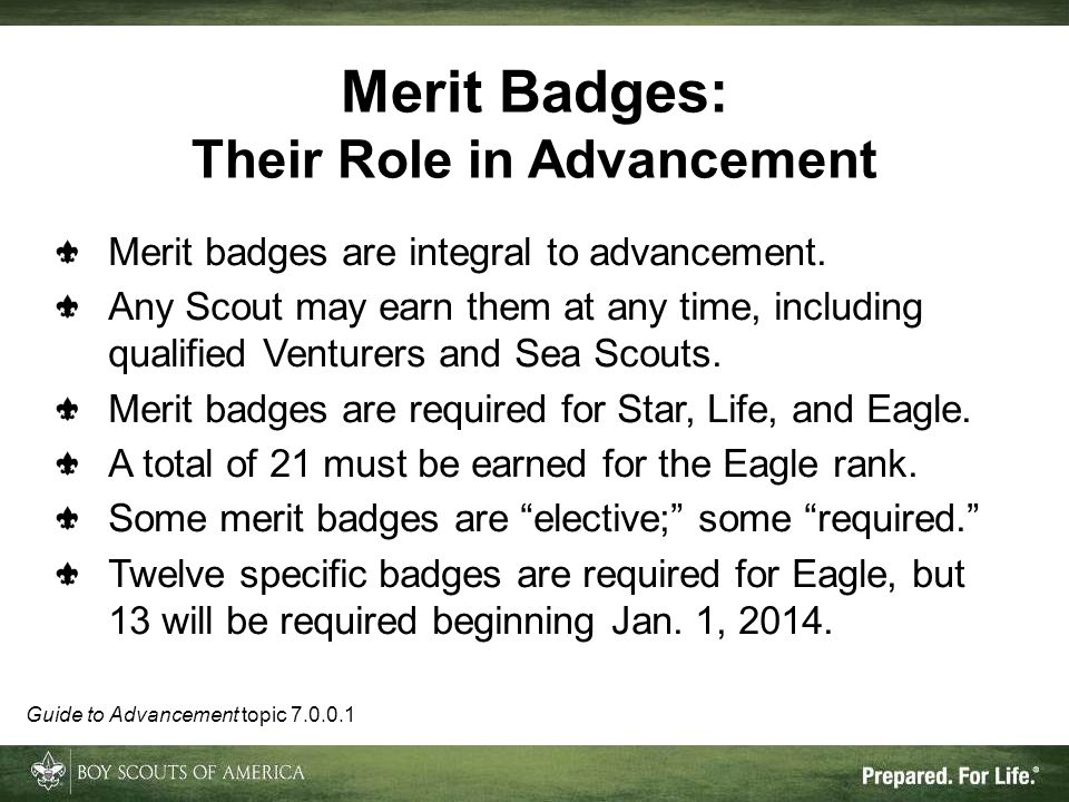 Their Role in Advancement