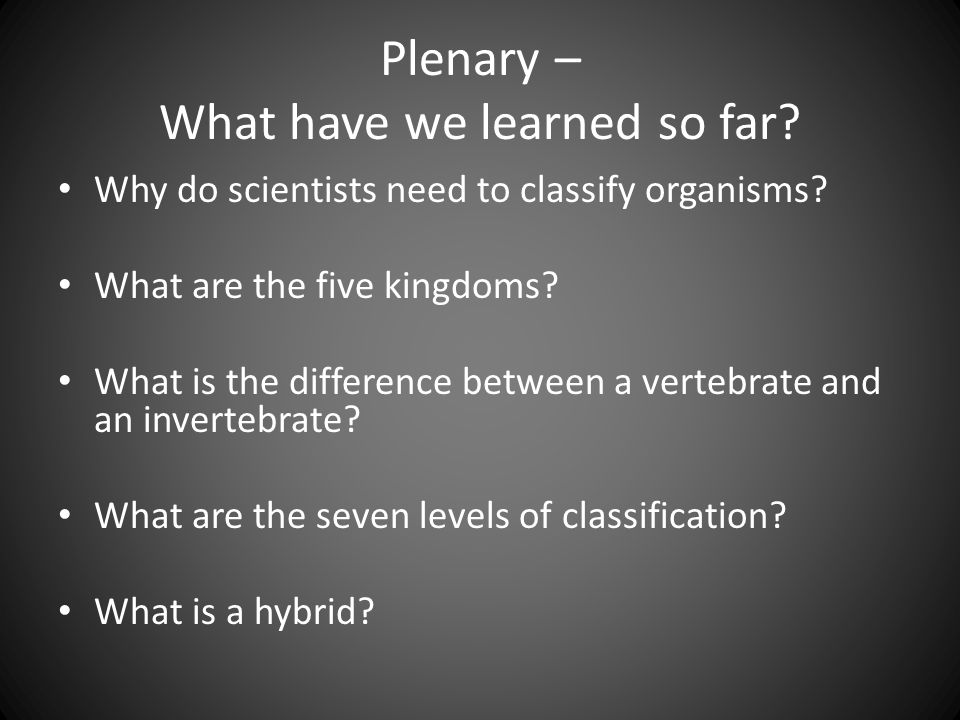 Plenary – What have we learned so far