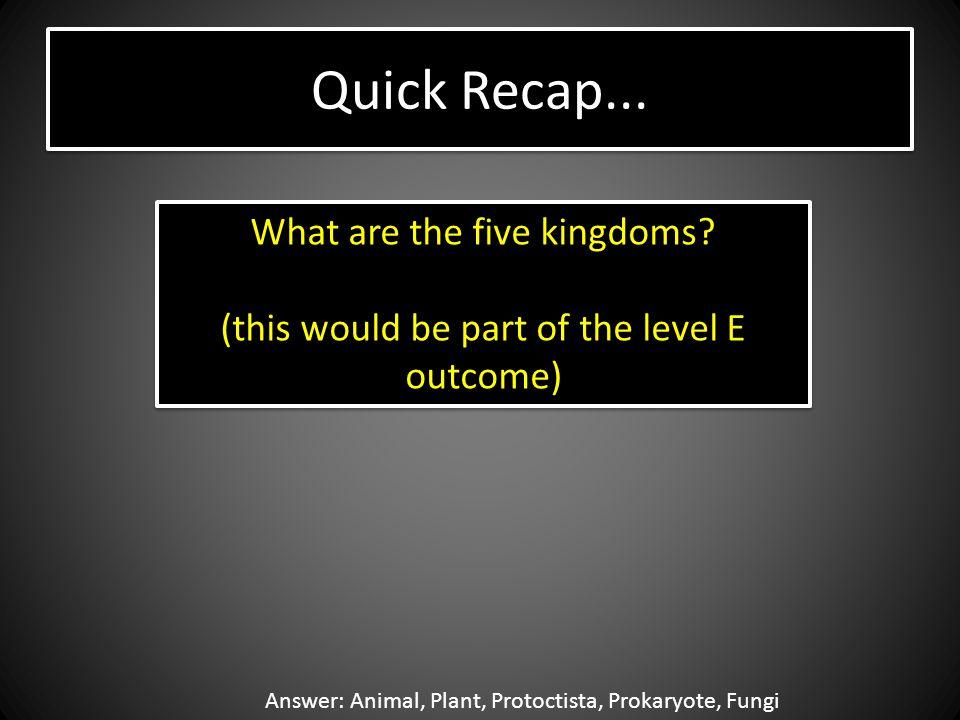 Quick Recap... What are the five kingdoms