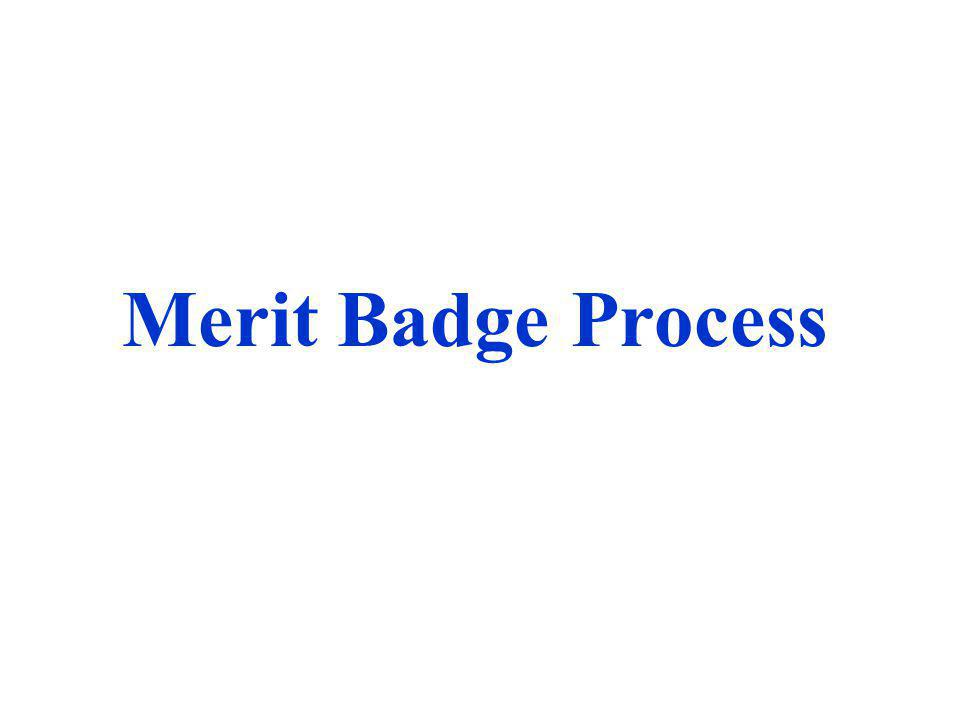 Merit Badge Process